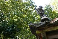 日吉神社の写真・動画_image_56927