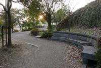 橿森公園の写真・動画_image_66277
