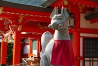 金神社の写真・動画_image_66287