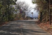 金華山ドライブコースを歩くの写真・動画_image_127391