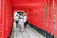 三光稲荷神社の写真・動画_image_140690
