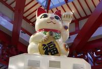 大須商店街連盟の写真・動画_image_155354
