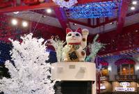 大須商店街連盟の写真・動画_image_158134