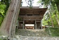 洲原神社の写真・動画_image_183315