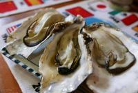 蒸し牡蠣が美味しかったお店の写真・動画_image_223738