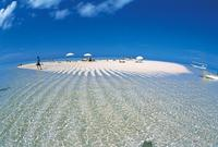 百合ヶ浜の写真・動画_image_264708