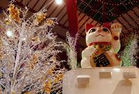 大須商店街連盟の写真・動画_image_286648
