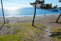 一色海水浴場の写真・動画_image_558458