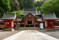 霧島神宮の写真・動画_image_759667