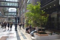 神戸ハーバーランドumieの写真・動画_image_49483