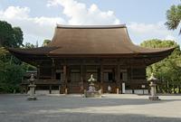 園城寺の写真・動画_image_75012