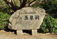 おきなわワールド 文化王国・玉泉洞の写真・動画_image_210878