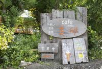 cafe美卵の写真・動画_image_414696