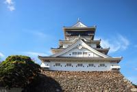 小倉城の写真・動画_image_452372