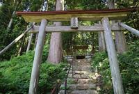 鎌倉神社の写真・動画_image_497410