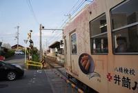 妙心寺駅の写真・動画_image_168659