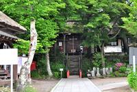 鎌原観音堂の写真・動画_image_462815