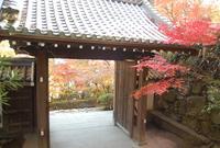八幡山ロープウェーの写真・動画_image_27687