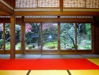 胡宮神社の写真・動画_image_240418