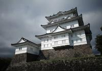 小田原城の写真・動画_image_665463