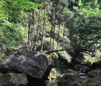 鍋ヶ滝の写真・動画_image_359337