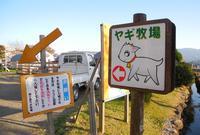 【閉店】ビビッドタウン関ヶ原ヤギ牧場の写真・動画_image_123863
