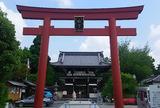 京都で最も古い梅の名所「梅宮大社」