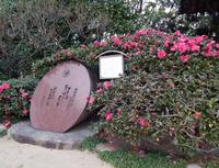 祇園神社の写真・動画_image_249267