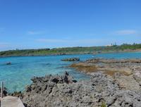シギラビーチの写真・動画_image_331396