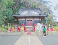 静岡浅間神社の写真・動画_image_273334