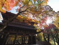 永源寺の写真・動画_image_67129