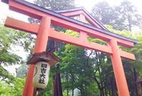 日吉大社の写真・動画_image_178773