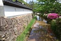 法樹寺の写真・動画_image_32087