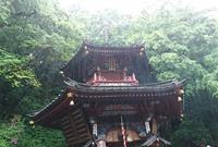 水澤観世音(水澤寺)の写真・動画_image_290880