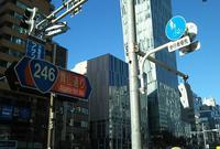 青山通りの写真・動画_image_512441
