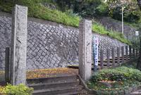 王子神社(王子権現)の写真・動画_image_699317