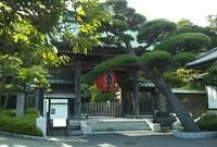長谷寺の写真・動画_image_810454