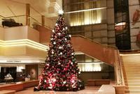 ヨコハマ グランド インターコンチネンタルホテルの写真・動画_image_470178