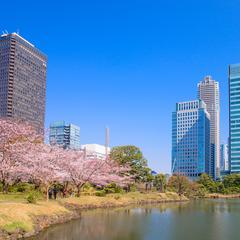 【2020年4月版/東京一人旅】一人旅におすすめの観光スポット!