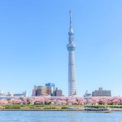 【2020年4月版】東京の定番観光スポットを紹介!