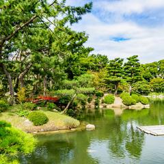 【広島・縮景園の楽しみ方ガイド】四季を彩る花々と美しい庭園を味わう散歩に出かけよう!