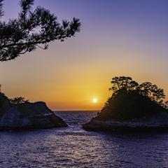 宮城県の新型コロナウイルス感染症対策と観光の最新情報(6月4日更新)