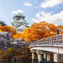 秋の大阪を楽しむ!おでかけにぴったりのおすすめプランを紹介