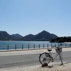 大久野島 サイクリングロード