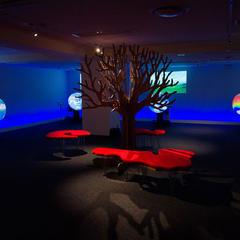 触れる地球ミュージアム