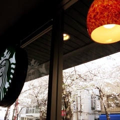 スターバックスコーヒー 八重洲さくら通り店(STARBUCKS COFFEE)
