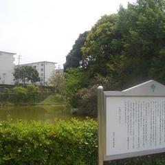 信太の森の鏡池史跡公園