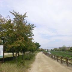 天野川緑地