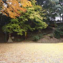 岩上神社の巨石