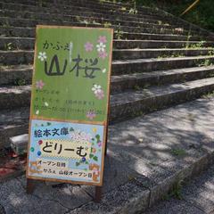 かふぇ 山桜